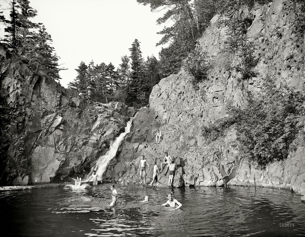 1904. Лесной водоем.