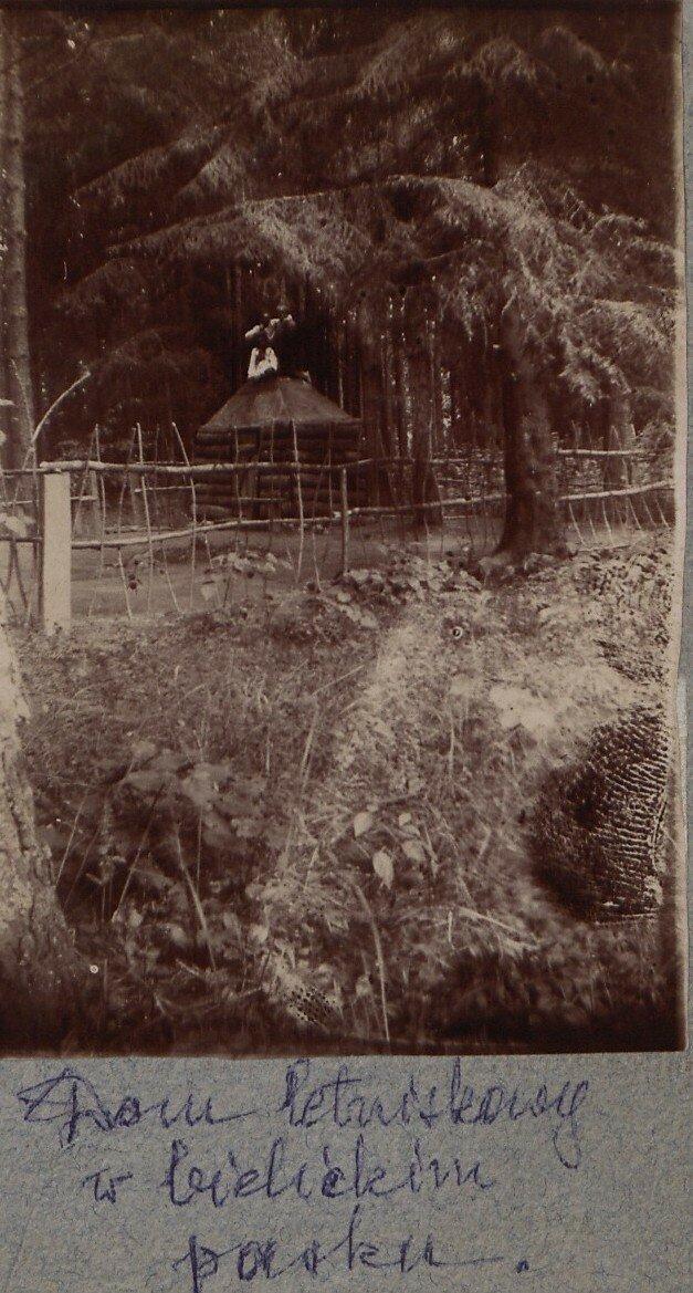 Дом Робинзона в парке Белицы