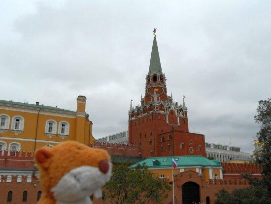http://img-fotki.yandex.ru/get/9151/136123820.7/0_b8601_4a0daef3_XL.jpg