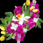 MRD_EggStraSE_flower-cluster2.png