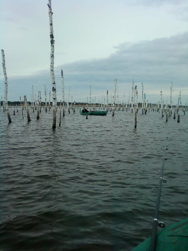 Рыбалка на озере платная (30.07.2013)