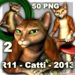 Catti (3).jpg
