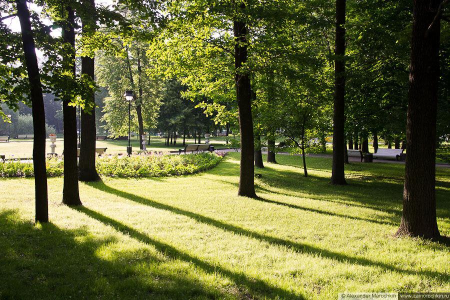 Утреннее солнце в Екатерининском парке