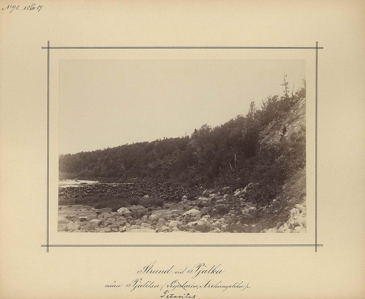 17.8.1889.Вид реки Pjalka, возле деревни Pjalitsan.