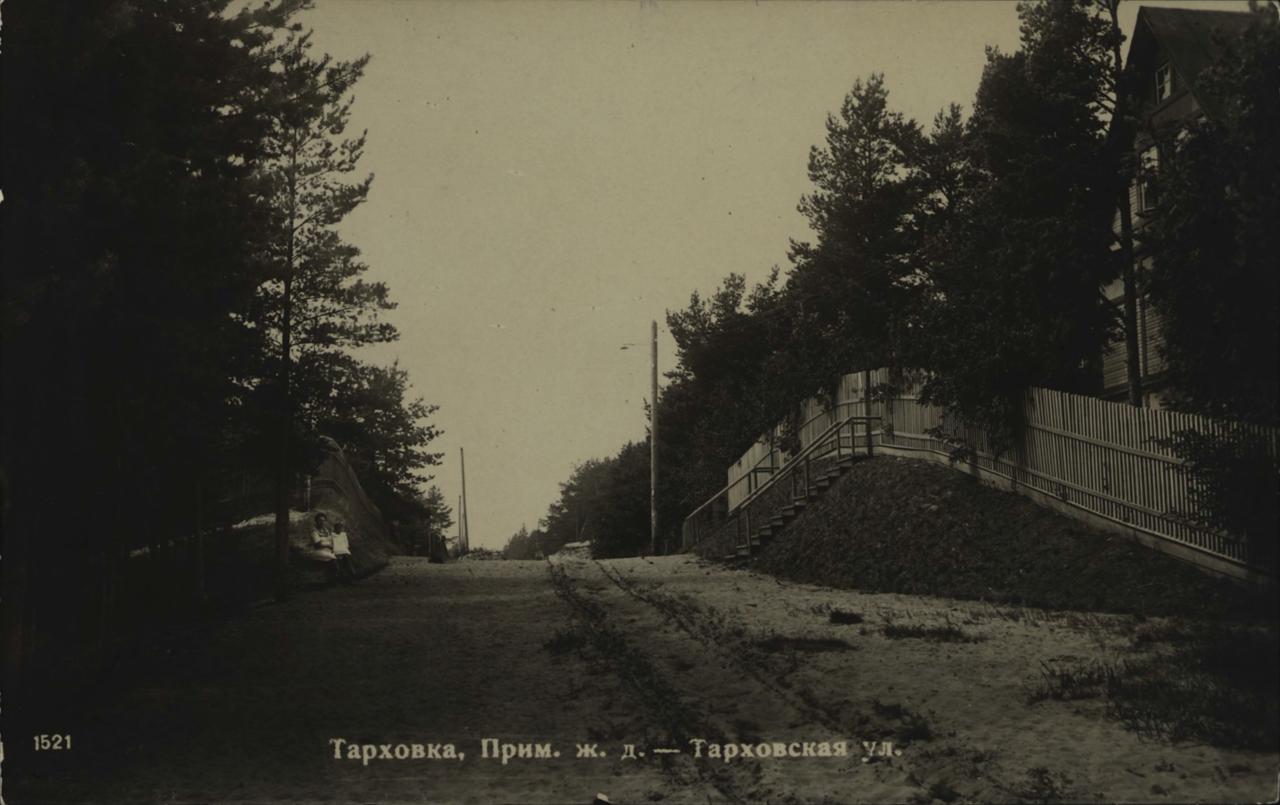 Тарховка. Тарховская улица