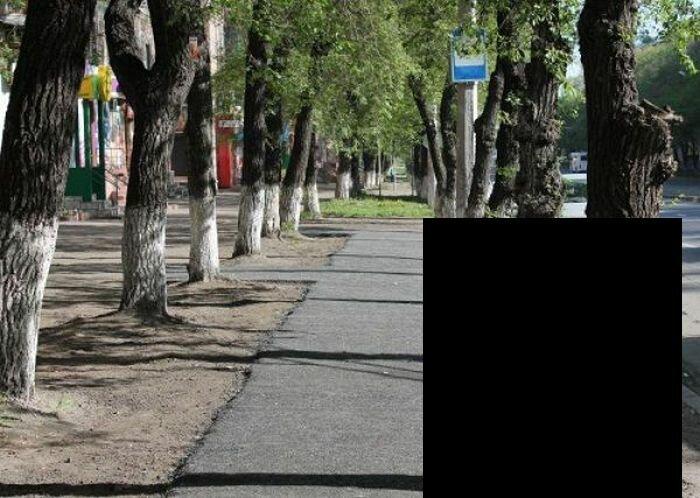 Новый способ коммунальщиков по уходу за деревьями