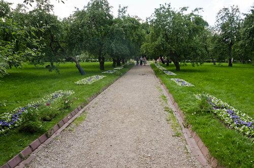 Дорога в сад ! (15 06 13 172)