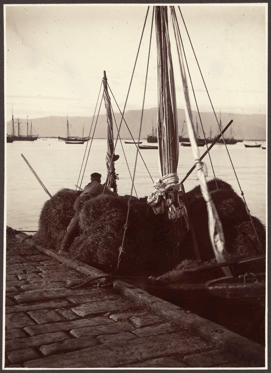 Разгрузка сена с лодки