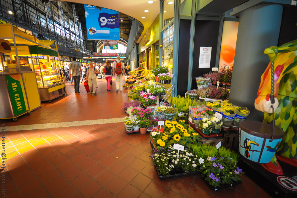 Hauptbahnhof-(15).jpg