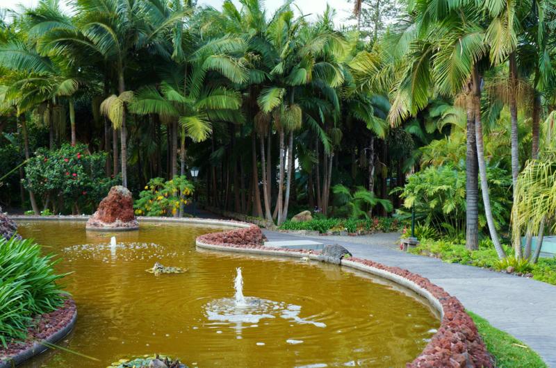 Ботанический сад маркиза де Арукас. Гран-Канария, Испания