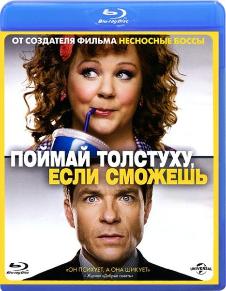 Поймай толстуху, если сможешь / Identity Thief (2013) BD-Remux + BDRip 1080p/720p + HDRip