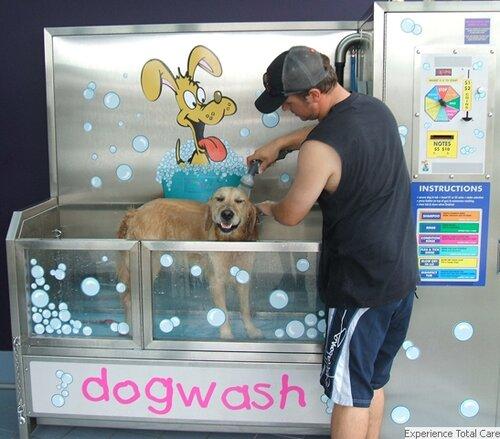 Как помыть собаку (щенка)