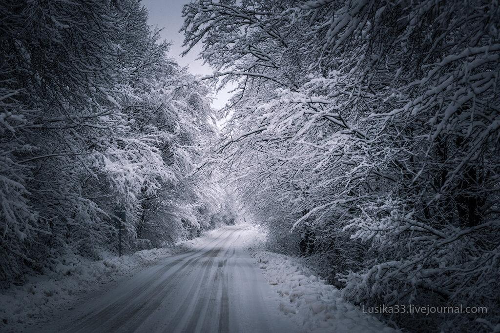 Лесная дорога, Болгария