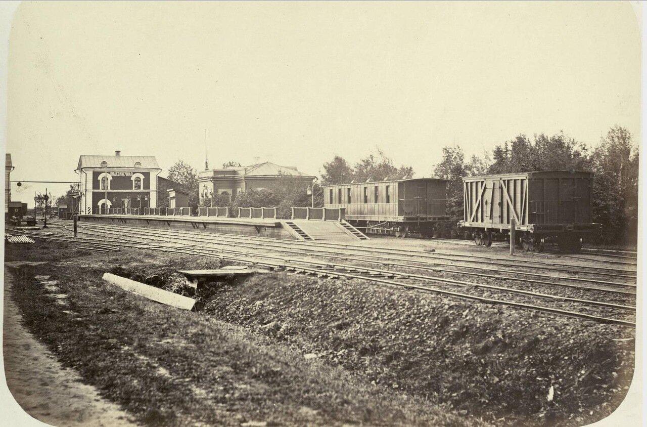 40. Станция Подсолнечная.