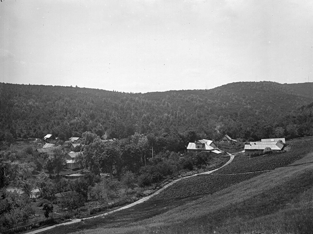 ������� �����. ����� ���. 1894 �. �. ��������
