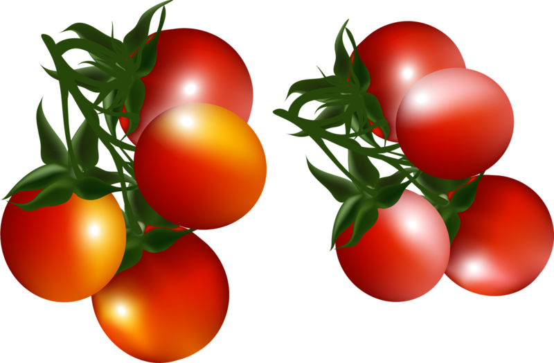 tomato (2).png