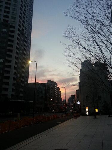 Вот так выглядела дорога к Хомбу Додзе от моего отеля в пол шестого утра