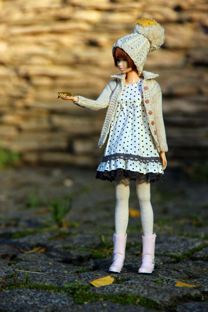 Куколка Момоко