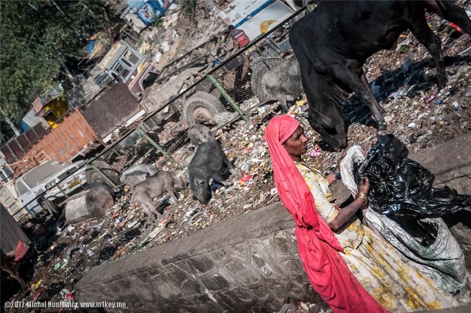 Женщина копается в мусоре в Джайпуре - путешествие по Индии / India by Michal Huniewicz