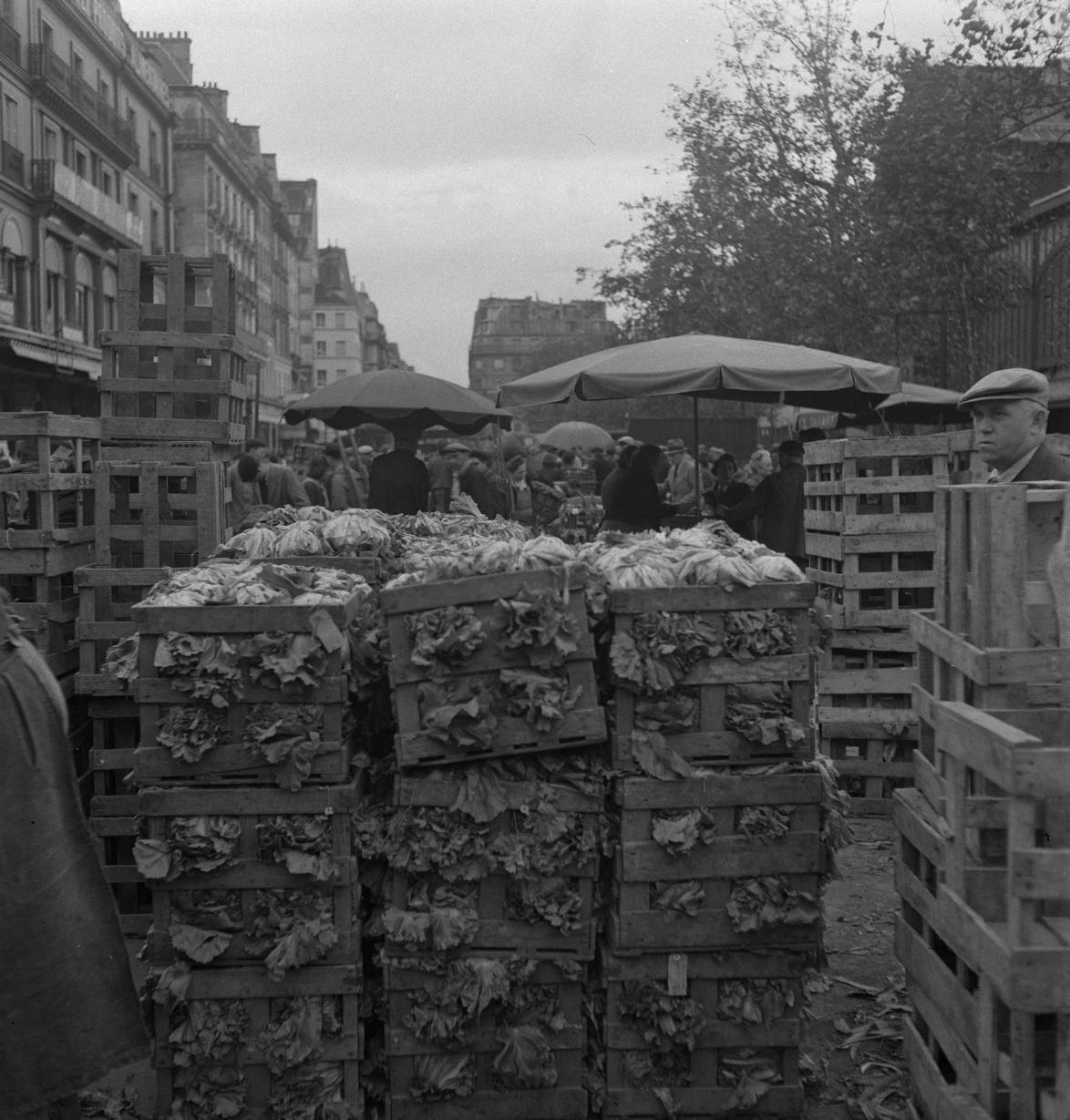 13. Выбор овощей для продажи варьируется в зависимости от сезона