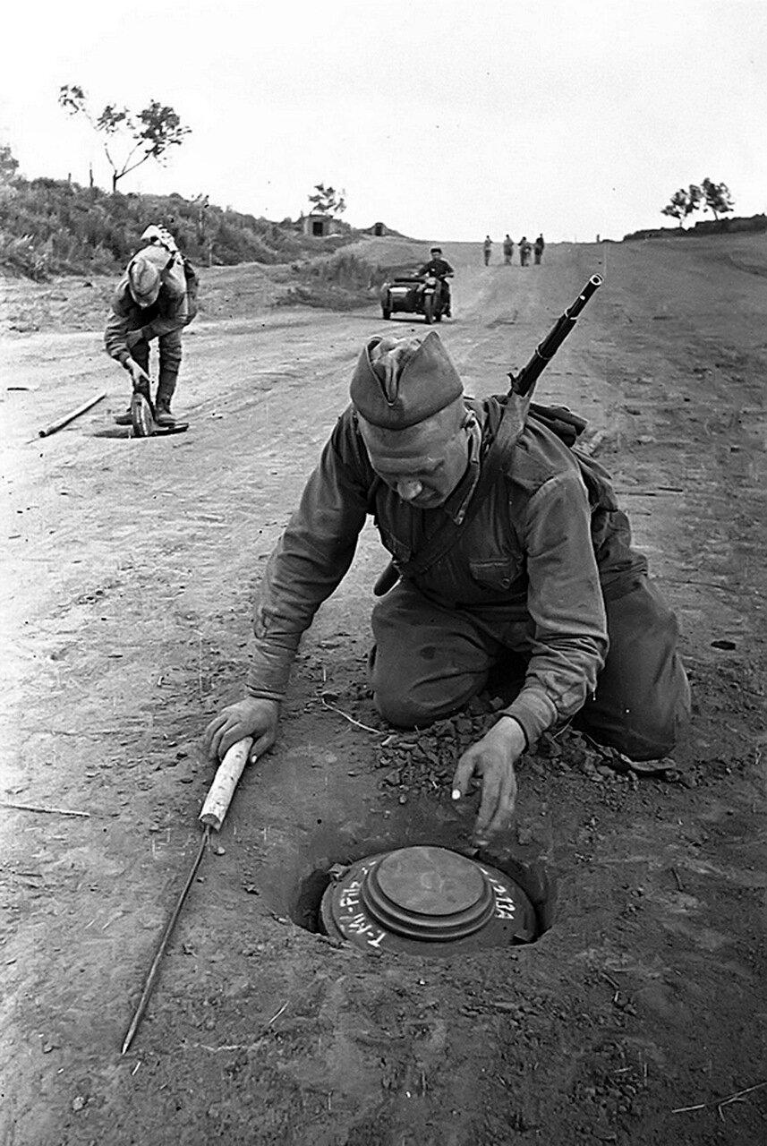 1943. Сапёры обезвреживают немецкие противотанковые мины