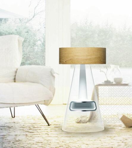 Современный камин - очиститель воздуха