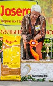 http://img-fotki.yandex.ru/get/9155/209566514.6/0_bf93e_8fe7adf9_M.jpg