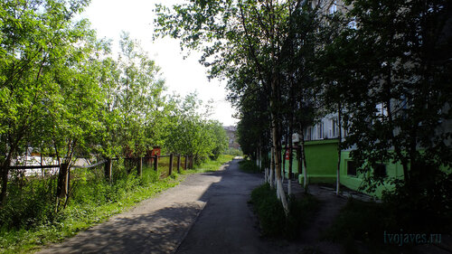 Фото города Инта №4785  Аллея между Мира 63 (д/с