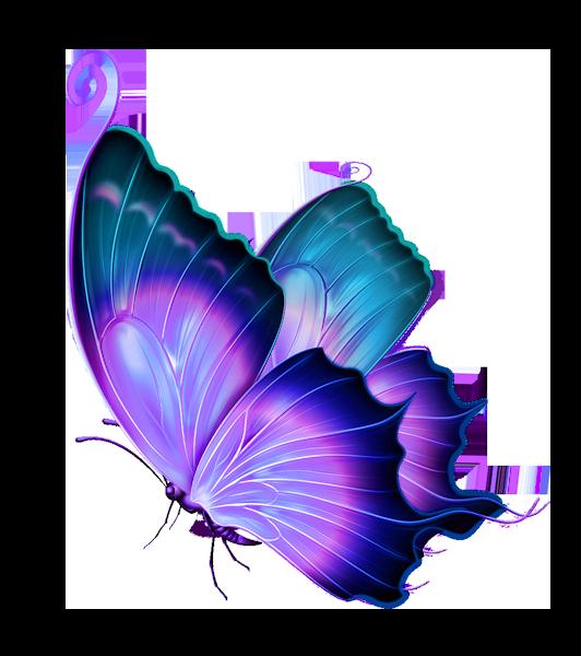 """Résultat de recherche d'images pour """"tube png papillon"""""""