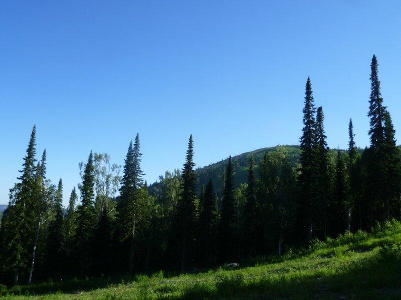 Россия, Шерегеш - гора Зеленая (Russia, Sheregesh - Green Mountain)