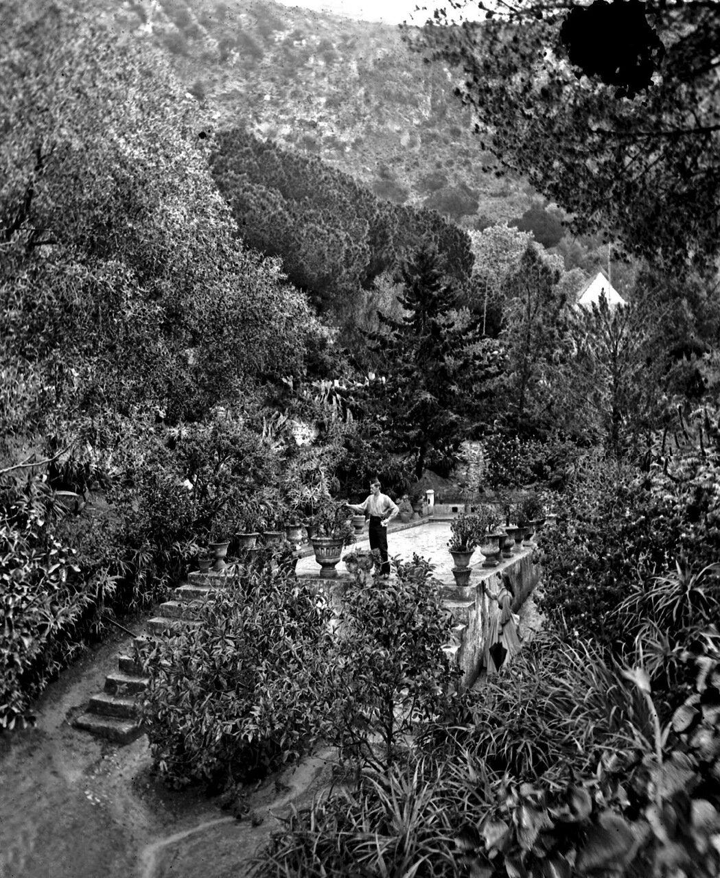1890. Сады Аламейды