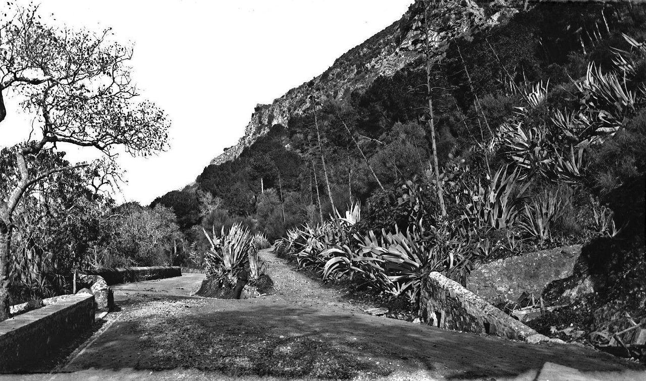 1890. Место для прогулок