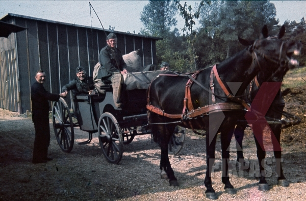 stock-photo-horse-wagon-france-wehrmacht-1940-9289.jpg