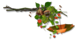 autumn dreams by_mago74 PNG (5).png