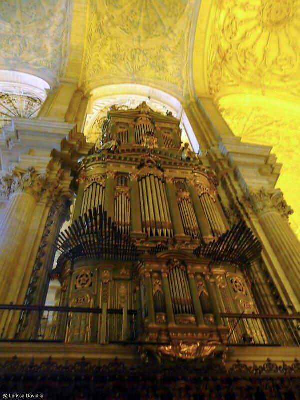 Malaga.  El Catedral. (25).jpg