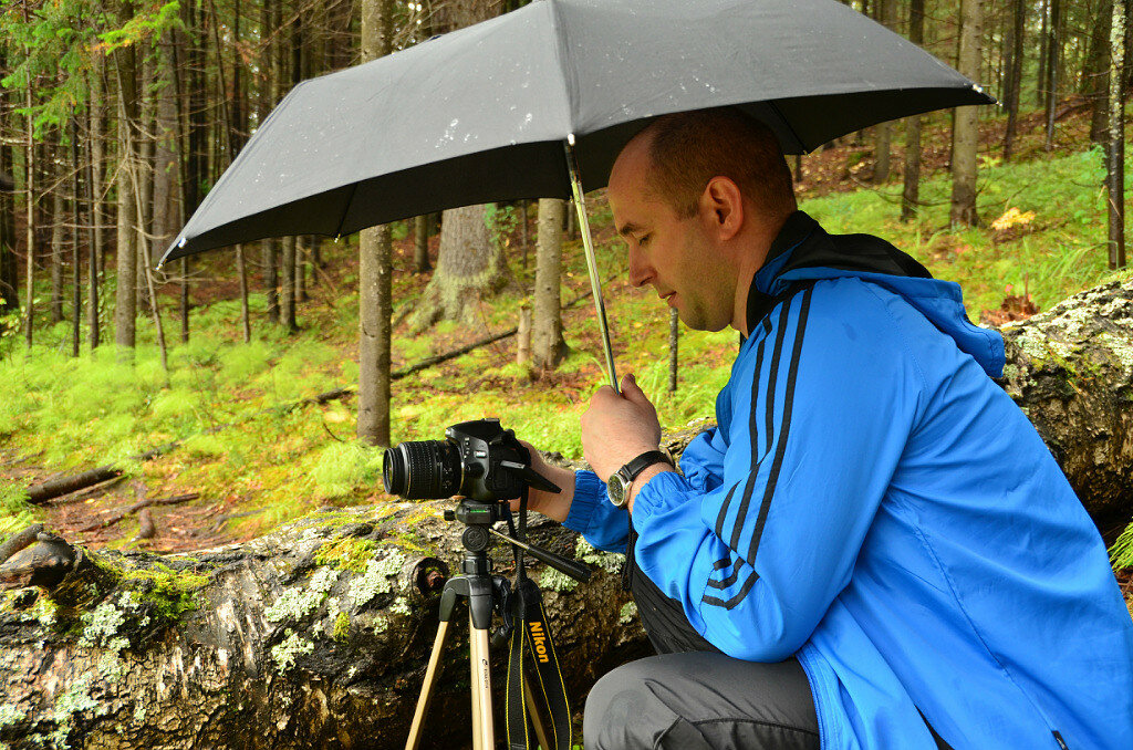 На сайте большинство фотографий снято на мою любимую зеркалку Nikon D5100 KIT 18-55. Ну а сама эта фотография сфотографирована моим другом Михаилом на Nikon D5100 с объективом Sigma 18-250.