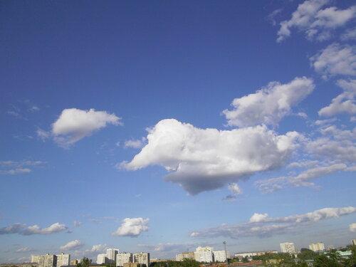Облако похожее на летающего слона : )