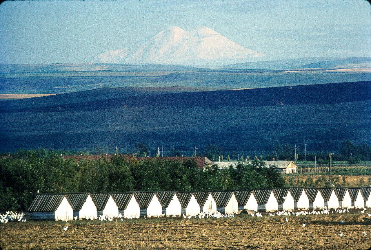 Район Ессентуков. Вид Эльбруса