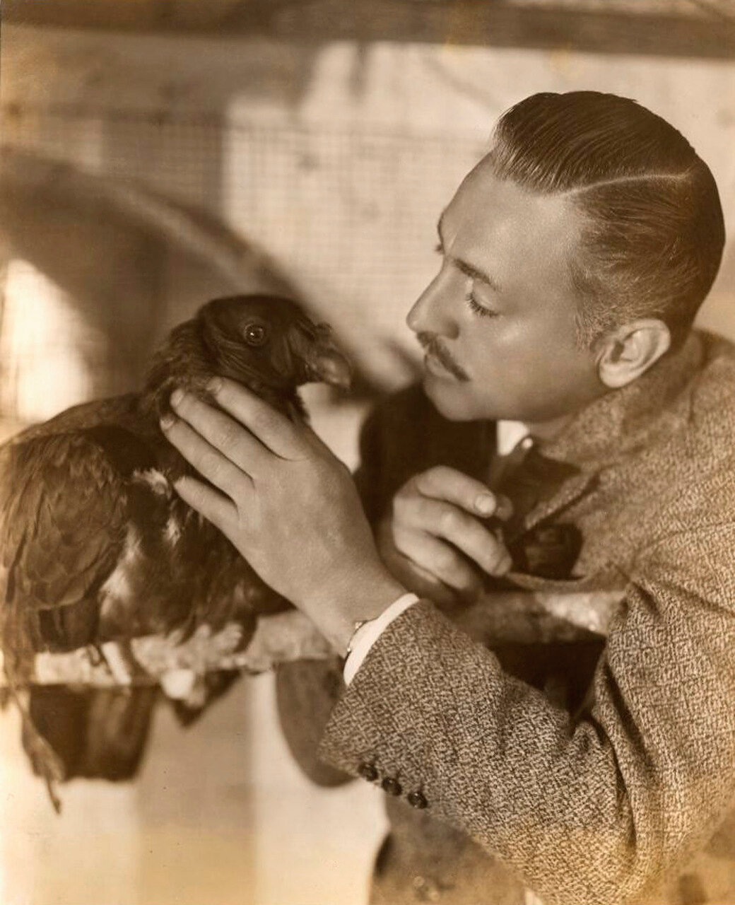 John Barrymore With His Pet Vulture, 1920's