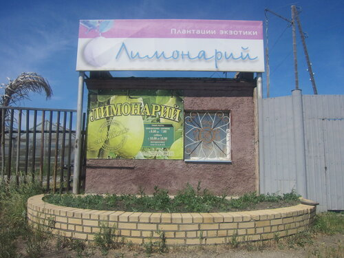 Лимонарий вНаровчатке Агаповского района