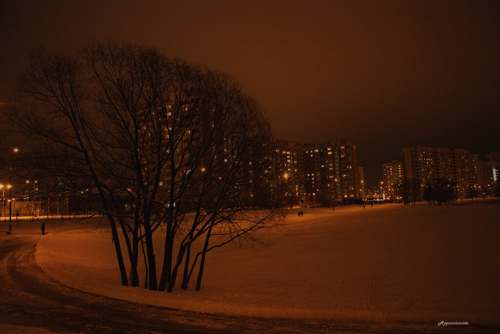 Февральский снегопад