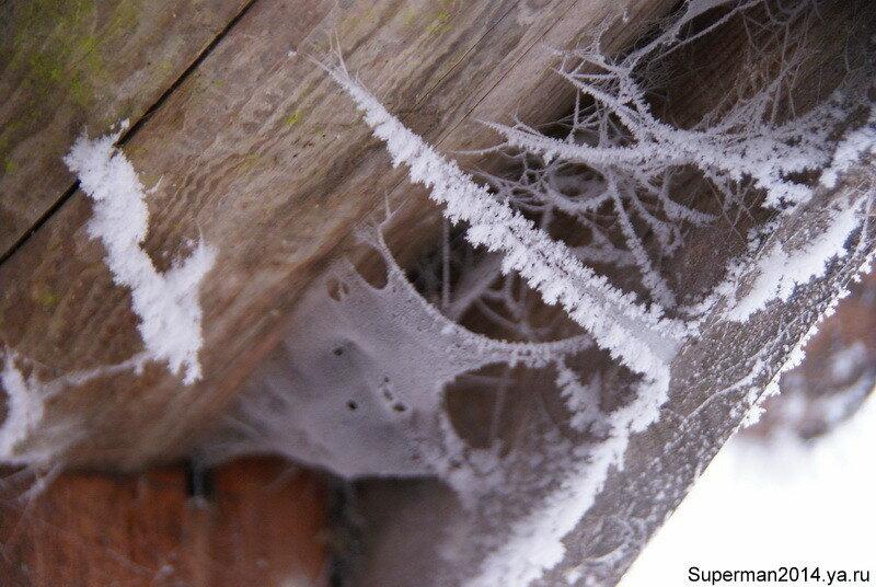 Ледяные паутинки