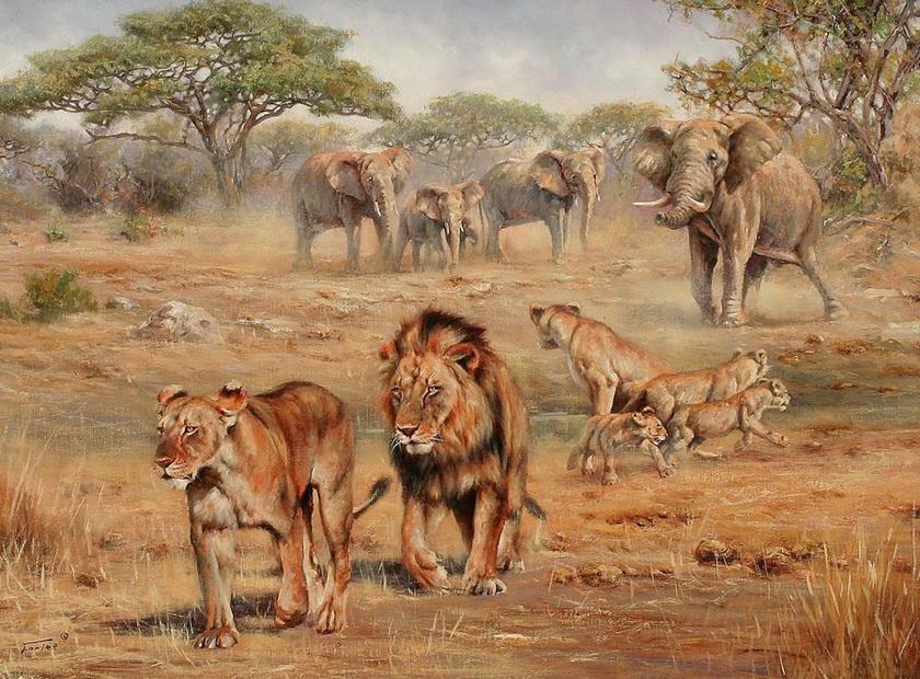 Картинки для декупажа природа и животные африки