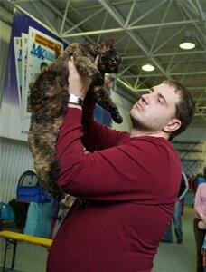 """Международная выставка кошек """"Удивительные кошки"""", 5-6 октября 2013, г. Сургут, ХМАО 0_d67b9_d2d6db22_M"""