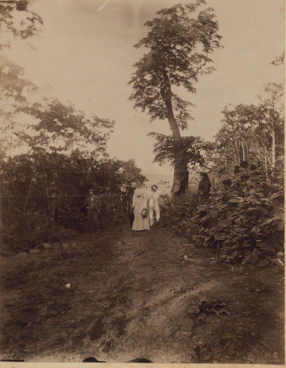 Прогулка в лесу, в районе Владивостока, май 1899