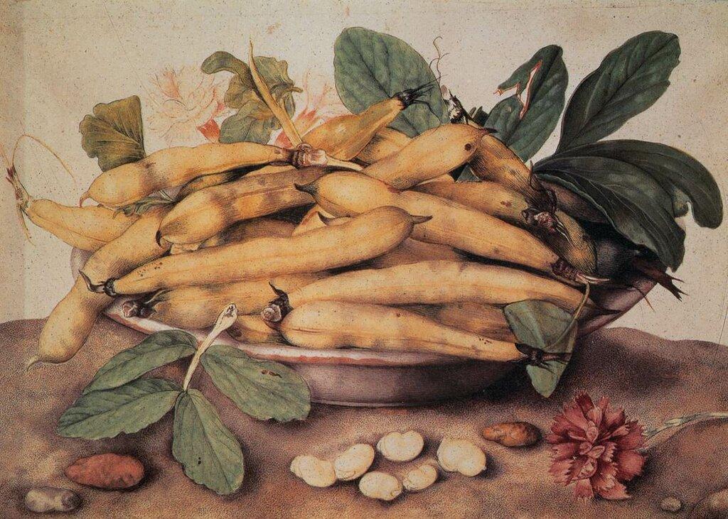 52022-plate-of-peas-garzoni-giovanna.jpg