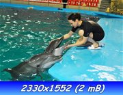 http://img-fotki.yandex.ru/get/9163/224984403.2/0_b8d1e_61affba5_orig.jpg
