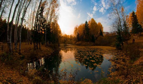 Осенний Дендропарк