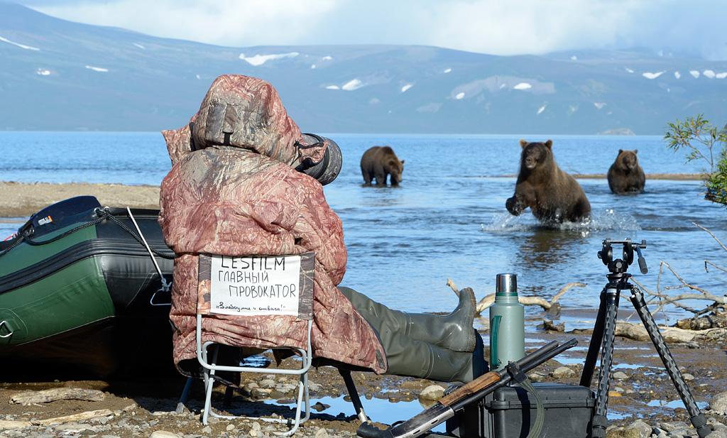 «Матуха и трое ее лончаков завтракают на плаву поднятым со дна озера отнерестившимся лососем. С