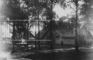 Конюшни в красносельском лагере.